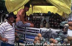 Pinapple sellers in Alegre