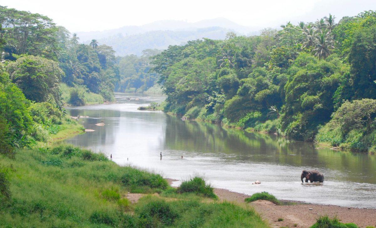 Келани река в Шри-Ланке