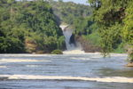 David Redford - Murchison Falls